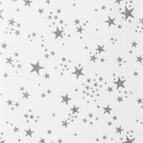 Winter Wonderland Scattered Star Silver on White
