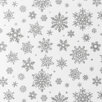 Winter Wonderland Delicate Snowflake Silver on White