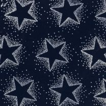Christmas Sparkle Dotty Star Silver on Navy