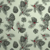 Wild Winter Pine Cones on White Kraft