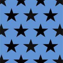 Fun Eco Black Star on Bright Blue